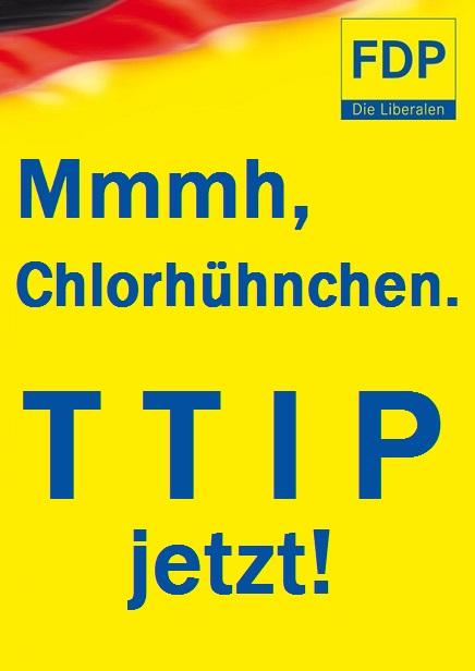 FDP Plakat Europawahl