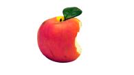 Der Tod von Apple-Gründer Steve Jobs war für Millionen Fans eine Tragödie. Für seine Biografie allerdings ein Segen. Die Nachfrage nach dem Buch ist inzwischen so groß, wie die Nachfrage nach dem Impfstoff gegen die Schweinegrippe gewesen wäre, wenn die Schweinegrippe eine echte Bedrohung dargestellt hätte. Wenn Steve Jobs das […]